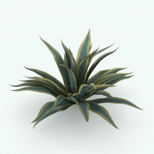Revit Family / 3D Model - Agave Rendered in 3D Max with Vray Texture Set 1