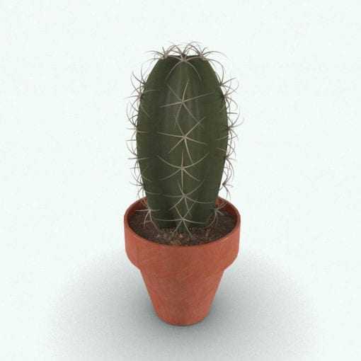 Revit Family / 3D Model - Cactus Plant Rendered in 3D Max with Vray