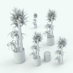 Revit Family / 3D Model - Corn Stalk Dracaena Variations