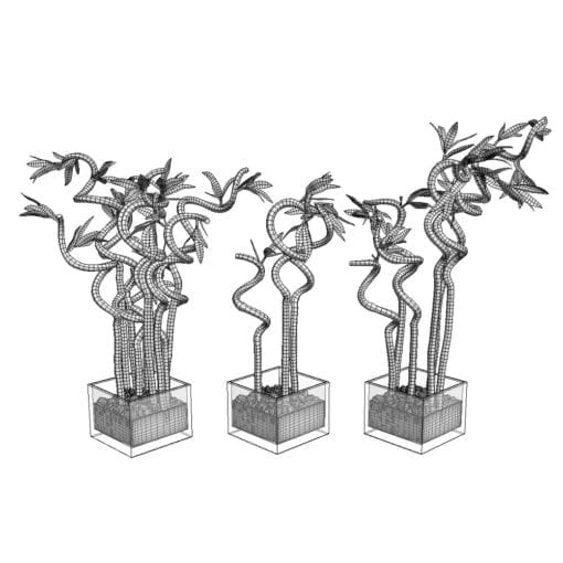 Revit Family / 3D Model - Curly Bamboo 3D Max/FBX Wireframe