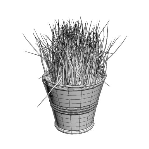 Revit Family / 3D Model - Grass in a Pot 3D Max/FBX Wireframe