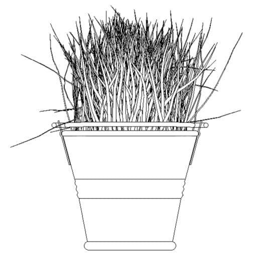 Revit Family / 3D Model - Grass in a Pot - Revit and AutoCAD Front View