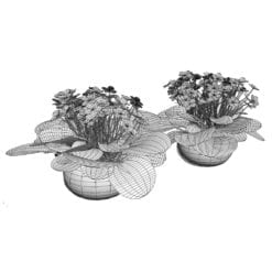 Revit Family / 3D Model - African Violet 3D Max/FBX Wireframe