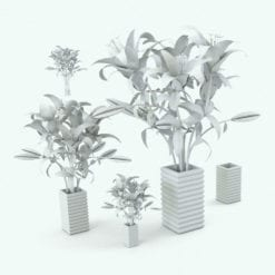 Revit Family / 3D Model - White Lilies Variations